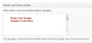 Google Analytics Paste Tracking Code